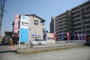 Haru_nobori2